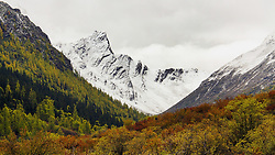 October 25, 2016 - Ngawa, Ngawa, China - Sichuan,CHINA-October 25 2016: (EDITORIAL USE ONLY. CHINA OUT) Autumn scenery of Majiagou, Sichuan Province. Majiagou,located in Ngawa Tibetan and Qiang Autonomous Prefecture, southwest China's Sichuan Province, is a undeveloped scenic spot with altitude of more than 3,000 meters. (Credit Image: © SIPA Asia via ZUMA Wire)