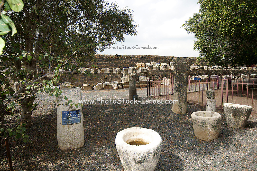 Israel, Sea of Galilee, Capernaum
