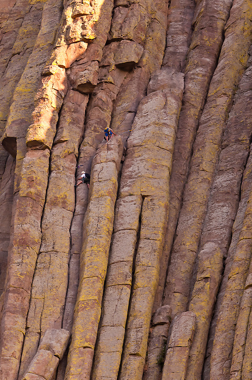 Rock climbers climbing the 867 foot tall Devils Tower (a granite monolith which is a sacred site to American Indians), Devils Tower National Monument, Wyoming USA