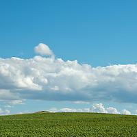 Heartland - South Dakota landscapes