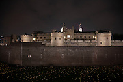 As commemoration of the centenary of the end of the First World War, an installation at the Tower of London, called Beyond the Deepening Shadow: The Tower Remembers fills the moat with thousands of individual flames: a public act of remembrance for those who lost their lives in the Great War, on 4th November 2018 in London, United Kingdom. The tribute will run for eight nights, leading up to and including Armistice Day.