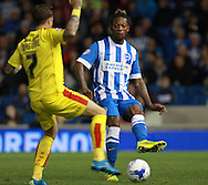 Brighton defender full back Gaetan Bong passes down the line during the Sky Bet Championship match between Brighton and Hove Albion and Rotherham United at the American Express Community Stadium, Brighton and Hove, England on 15 September 2015. Photo by Bennett Dean.