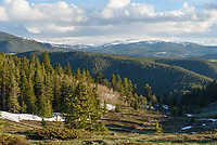 It was late May but there was still plenty of snow along Red Grade Road in the Bighorn Mountains.