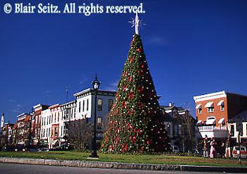 Christmas Tree, Gettysburg, Adams Co., PA