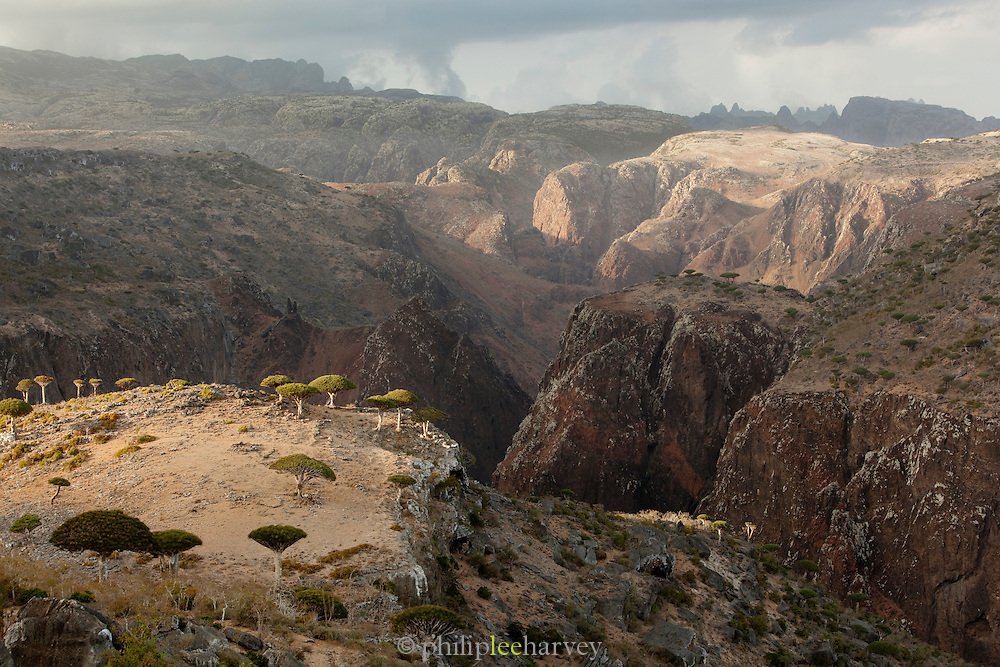 Mountainous landscape at Dixsam with a view to the Hagier Mountains, Socotra, Yemen