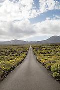 Straight sealed tarmac road crossing lava flows Malpais de Corona, Lanzarote, Canary Islands, Spain