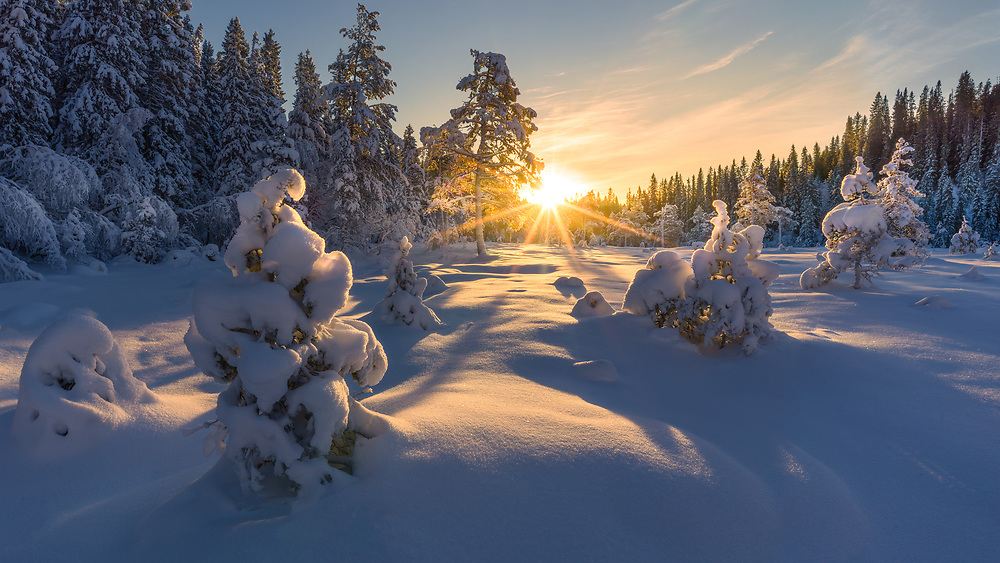 Trondheim, Norway. January 21.