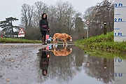 A resident walks their dog in flooding near Cookham after the Thames bursts its banks in and together with ground water floods the village, causing road closures.