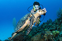 A young diver interacts with a Hawksbill Sea Turtle <br /> <br /> Shot in Cayman Islands