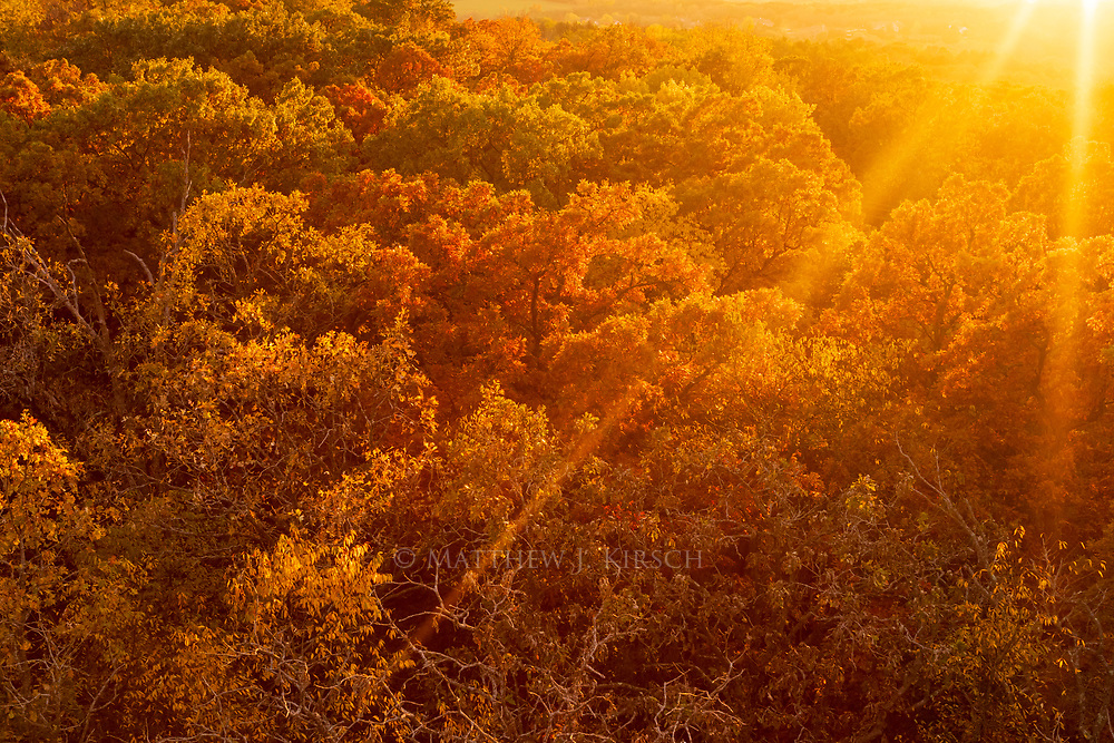 Autumn Canopy View at Lapham Peak State Park. Delafield, Wisconsin.  October 2017