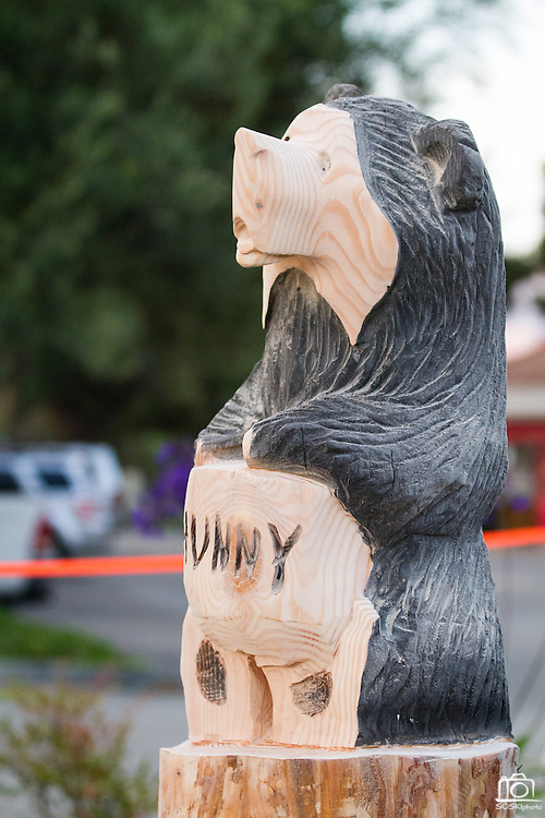 After being carved, sanded, torched, and painted, Ray Schulz's wooden black bear statues are covered in a lacquer finish to protect them from the weather.  Schulz visits Black Bear Diner in Milpitas, Calif. to demonstrate the chainsaw carving of the Black Bear wooden sculptures on July 11, 2012.  Photo by Stan Olszewski/SOSKIphoto.