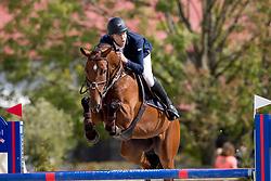 Poelmans Marijn, BEL, Calleto Z<br /> BK Young Horses 2020<br /> © Hippo Foto - Sharon Vandeput<br /> 6/09/20
