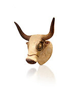 Minoan  bull's head rhython libation vessel, Machlos 1500-1450 BC; Heraklion Archaeological  Museum, white background. .<br /> <br /> If you prefer to buy from our ALAMY PHOTO LIBRARY  Collection visit : https://www.alamy.com/portfolio/paul-williams-funkystock/minoan-art-artefacts.html . Type -   Heraklion   - into the LOWER SEARCH WITHIN GALLERY box. Refine search by adding background colour, place, museum etc<br /> <br /> Visit our MINOAN ART PHOTO COLLECTIONS for more photos to download  as wall art prints https://funkystock.photoshelter.com/gallery-collection/Ancient-Minoans-Art-Artefacts-Antiquities-Historic-Places-Pictures-Images-of/C0000ricT2SU_M9w