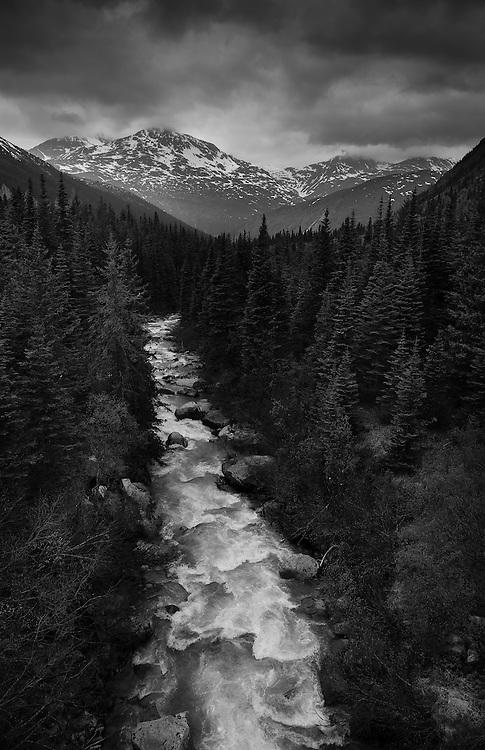 On the White Pass & Yukon Railroad. Outside of Skagway, AK.