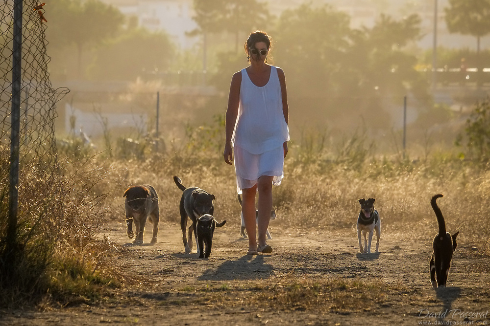 Woman comes back from a walk with her adopted pets.