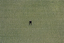 © Licensed to London News Pictures. 07/11/2018. London, UK. British artist Rob Heard stands amongst tens of thousands of shrouds during the unveiling of his exhibit 'Shrouds of the Somme' ahead of Armistice Day in London, Britain, 07 November 2018. All 72,396 shrouds that represent the soldiers who were never recovered during World War I are laid out shoulder to shoulder at London's Queen Elizabeth Olympic Park to mark the centenary of Armistice Day. Photo credit: Ray Tang/LNP
