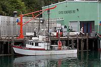 Salmon fishing boats coming in and tying up at the Caito dock in Noyo Harbor near Fort Bragg in Mendocino County, California