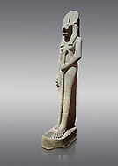 """Ancient Egyptian statue of goddess Sekhmet, grandodiorite, New Kingdom, 18th & 20thDynasty (1390-1150 BC), Thebes. Egyptian Museum, Turin. Grey Background.<br /> <br /> This statue is unfinished and is in the stage before polishing. Sekhmet, """"the Powerful One"""" was a fearsome goddess symbolised by her lioness head. Daughter of the sun she personifies the disk of the world during the day. Sekhmet is the angry manifestation of Hathor inflicting the scourges of summer heat, famine and illness which is why the goddess needed to be exorcised every day. Drovetti Collection. C 264 .<br /> <br /> If you prefer to buy from our ALAMY PHOTO LIBRARY  Collection visit : https://www.alamy.com/portfolio/paul-williams-funkystock/ancient-egyptian-art-artefacts.html  . Type -   Turin   - into the LOWER SEARCH WITHIN GALLERY box. Refine search by adding background colour, subject etc<br /> <br /> Visit our ANCIENT WORLD PHOTO COLLECTIONS for more photos to download or buy as wall art prints https://funkystock.photoshelter.com/gallery-collection/Ancient-World-Art-Antiquities-Historic-Sites-Pictures-Images-of/C00006u26yqSkDOM"""