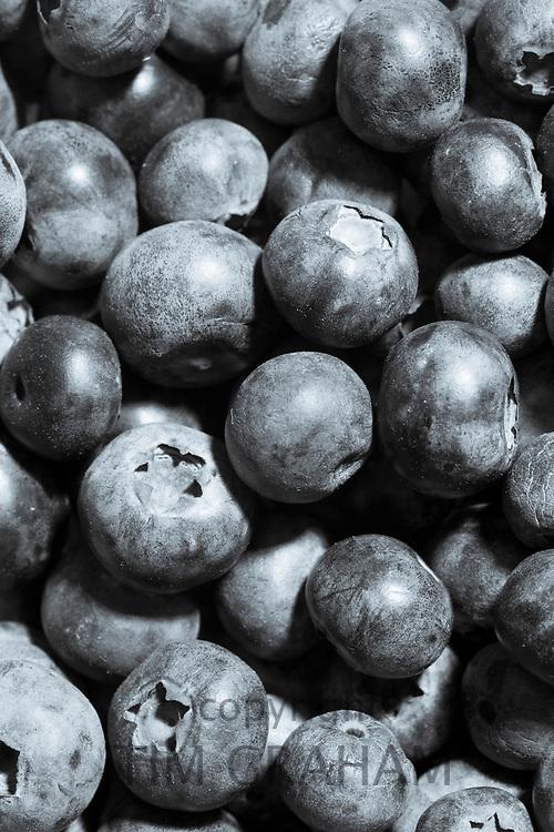 FINE ART PHOTOGRAPHY by Tim Graham<br /> FOOD - Fresh Blueberries