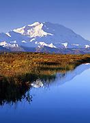 Denali National Park. Mt McKinley / Denali and the still waters of Wonder lake.