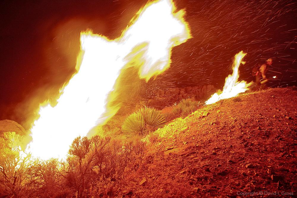 Vista Grande Hotshots set a back-burn ahead of the main fire.