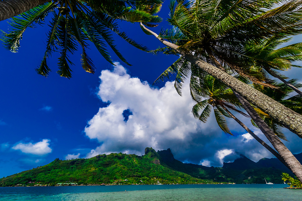Cook's Bay, island of Moorea, French Polynesia.