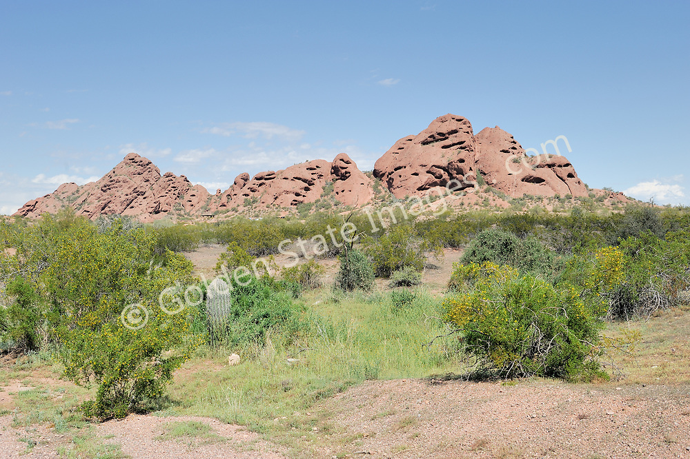 The red rock formations in Papago Park, located near in Phoenix, Arizona. <br /> <br /> The signature red sandstone buttes of Phoenix Arizona. Papago Park has an interesting history. In 1879 the area was designated as an Indian reservation for the Maricopa and Pima tribes. In 1914 it was declared a National Monument which it remained until 1932. During World War II it was home to a German prisoner of war camp. Papago received its current designation as a city park in 1959 when it was sold to the city of Phoenix.   <br /> <br /> The rocks are sedimentary formations colored red by their high iron oxide-hematite content. Their interesting shapes and form are the result of water and wind erosion.