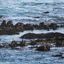 Praia (paisagem) fotografado na África do Sul. Registro feito em 2019.<br /> ⠀<br /> ⠀<br /> <br /> <br /> <br /> <br /> ENGLISH: Beach photographed in South Africa. Picture made in 2019.