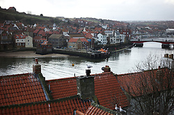 © Licensed to London News Pictures. <br /> 15/03/2015. <br /> <br /> Whitby, United Kingdom<br /> <br /> Seagulls sit on chimney's and roof tops in Whitby in North Yorkshire.<br /> <br /> Photo credit : Ian Forsyth/LNP
