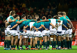 South Africa players huddle during the pre match warm up<br /> <br /> Photographer Simon King/Replay Images<br /> <br /> Under Armour Series - Wales v South Africa - Saturday 24th November 2018 - Principality Stadium - Cardiff<br /> <br /> World Copyright © Replay Images . All rights reserved. info@replayimages.co.uk - http://replayimages.co.uk