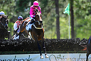 April 7, 2012 - Lucky Will and Willie McCarthy in the Stoneybrook hurdle at Stoneybrook Steeplechase, Raeford NC