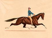 Dexter, The Trotting King ridden by John Murphy 1889