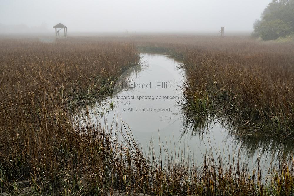 Saltwater tidal marsh in fog on a winter morning in Charleston, South Carolina.