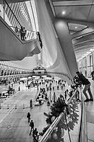 NYC - Oculus Interior (Westfield World Trade Center Mall)