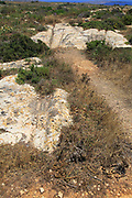 Prehistoric cart ruts tracks in limestone rock at Ta Cenc, Gozo, Malta