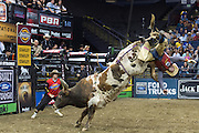 One can only imagine the thoughts going through this rider's mind.  He stuck the landing and no one was hurt.