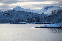 Vinteridyll i Ellingsøyfjorden.<br /> Foto: Svein Ove Ekornesvåg