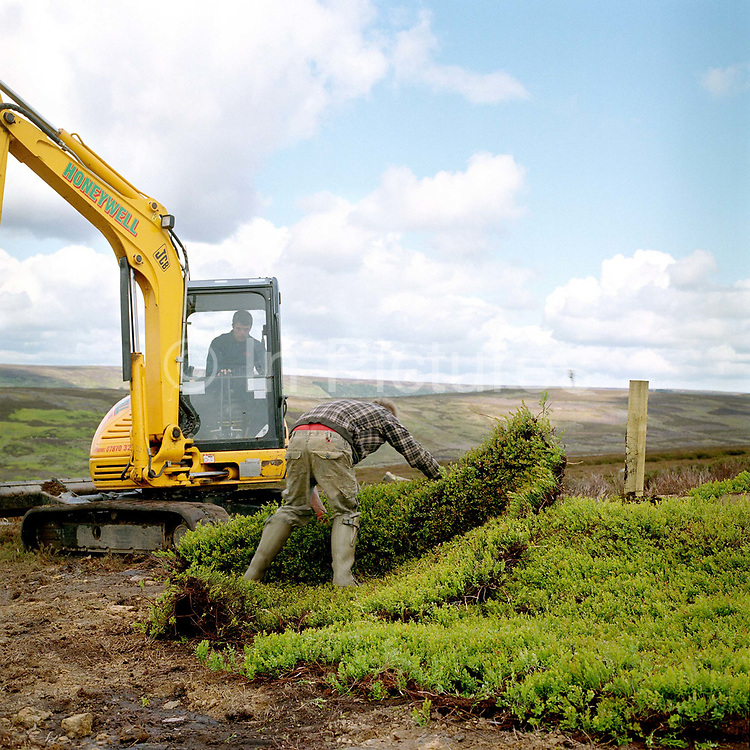 A gamekeeper moving a turf removed from the moor by a small digger to make a grouse shooting butt, Bransdale, North York Moors, North Yorkshire, UK
