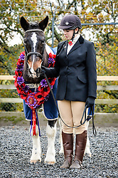 A poppy garland is worn by Sergeant Major 'Rocky' as he is paraded by Eleanor Goodsell, 17, from Plymouth, at the Royal Navy and Royal Marines Riding Stables at Bickleigh Barracks, Plymouth, during the first ever memorial service dedicated to horses killed or injured in conflict.