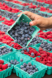 Red raspberries and blueberries for sale.