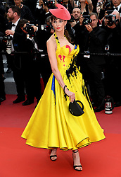 Frederique Bel attending the Sorry Angel Premiere as part of the 71st Cannes Film Festival