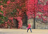 2012_10_21_Autumn_colour_SSI