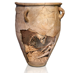 The Minoan clay burial pithos with skeleton in foetal,  Neopalatial period 1700-1450 BC; Heraklion Archaeological  Museum, white background.<br /> <br /> The body was placed in a foetal postion to aid insertion into the wide mouthed pithos