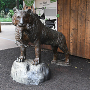 Annual weigh in at ZSL London Zoo on 23 August 2018, London, UK