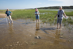 Judith, Diane & Bob On Horseshoe Crab Survey