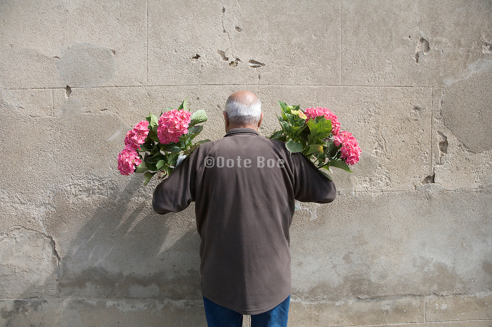 senior man holding two flower plants he just bought at an outdoor flower market