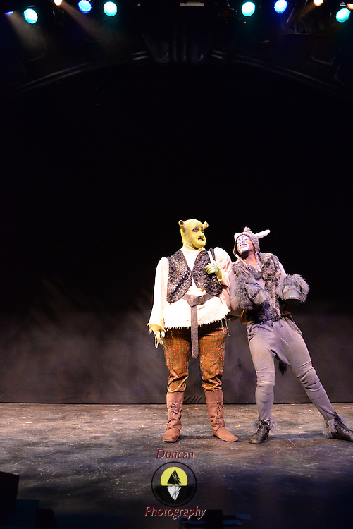 BRUNSWICK, Maine,  -- 8/16/15 -- Performance of Shrek Jr.  at Maine State Music Theatre. Photo © 2015 by Roger S. Duncan