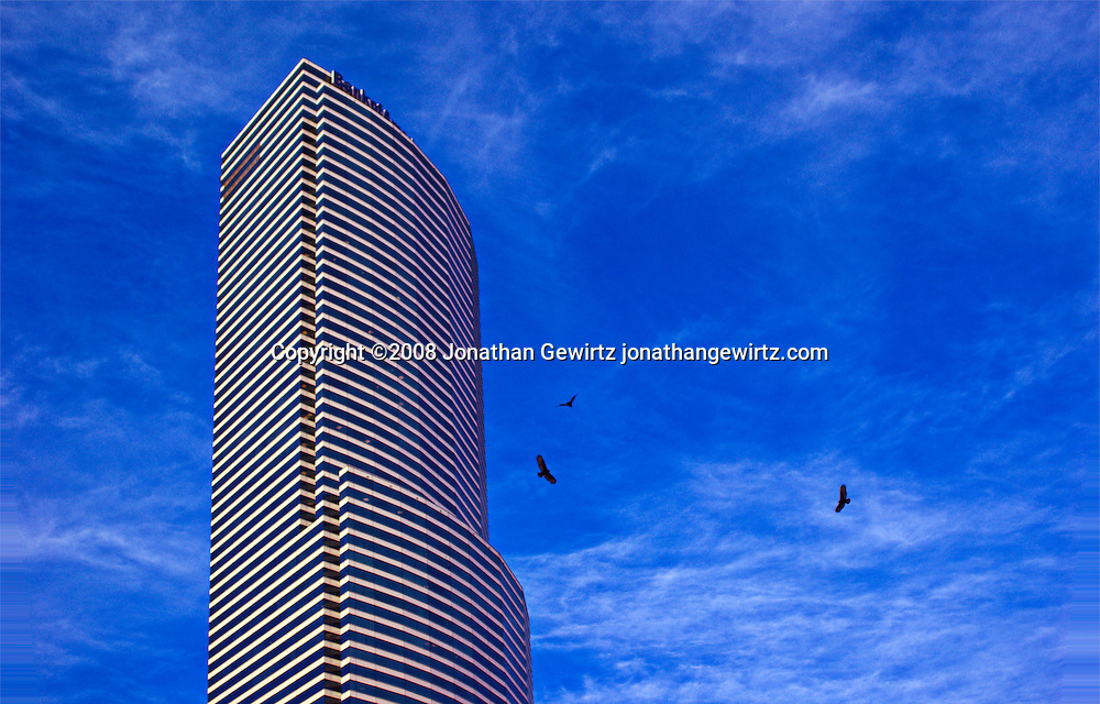 Originally called the Centrust Tower, later renamed Bank of America Tower, and currently Miami Tower, this office building is one of downtwon Miami's most prominent landmarks. WATERMARKS WILL NOT APPEAR ON PRINTS OR LICENSED IMAGES.