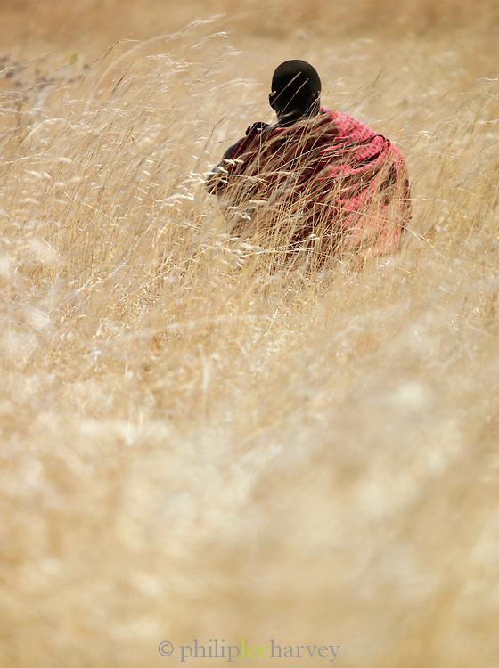 Maasai tribesman sitting in long grass in Chyulu Hills National Park, enya
