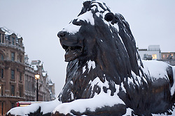 © under license to London News Pictures. 02/12/10. Snow covered lions on Trafalgar Square in London this morning (02/12/2010).  Credit should read Matt Cetti-Roberts/London News Pictures